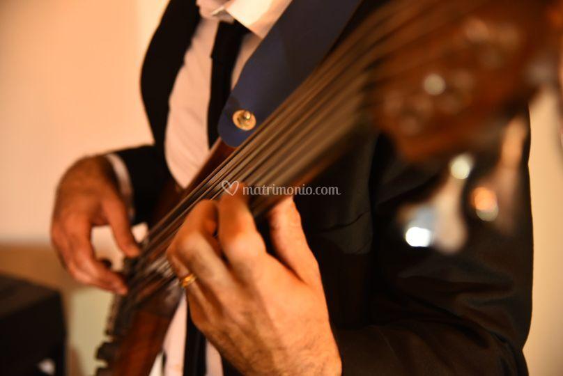 Giuseppe Brandi - Bass