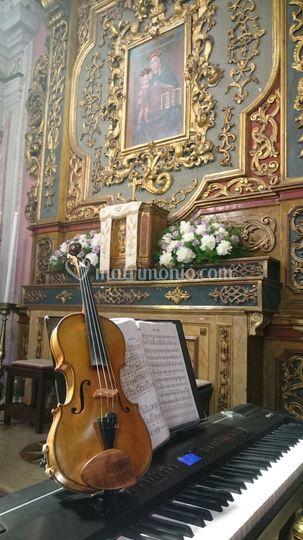 Il nostro violino...