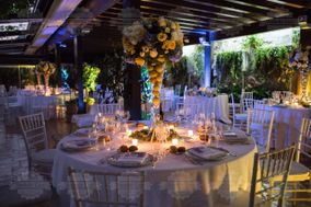 Daniela Cece Wedding & Party Planner