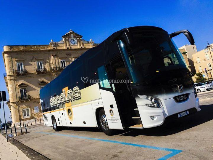 DePalma Bus