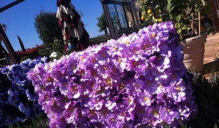 Il Giardino di Loredana 1