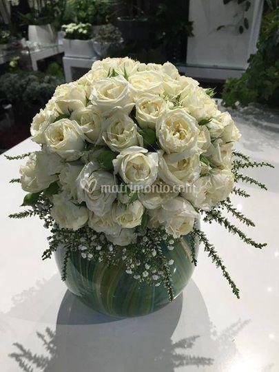 Floral design - Fiori & Piante Vera