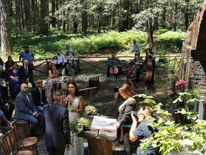 Wedding piano pernicana