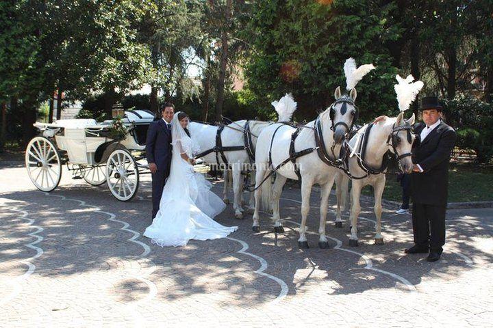 Matrimonio In Carrozza : Spose in carrozza