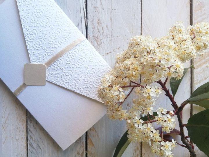 Cartesia Paper Designer