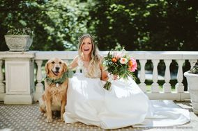 Wedding Pet's Chic