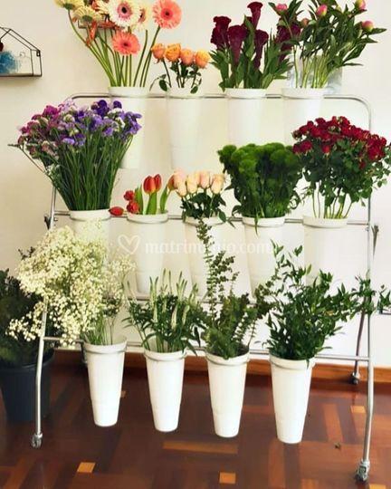 Keiki Flowers & Events