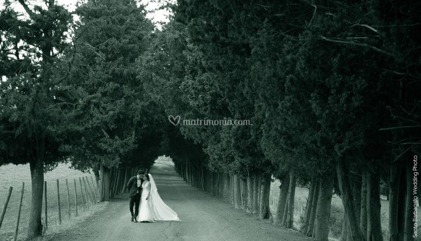 Fotografia Castello Camemi