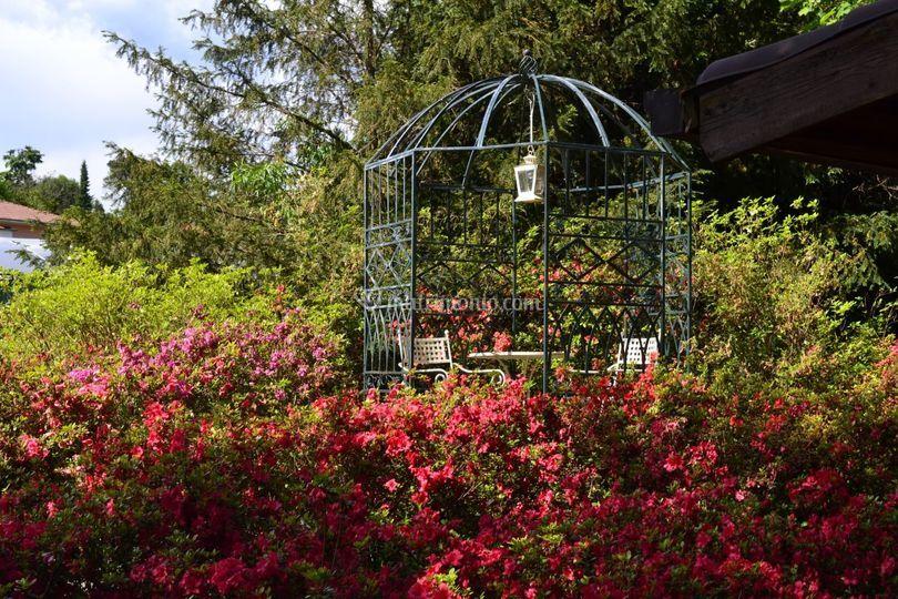 Jardin a vivre for Jardin jardine