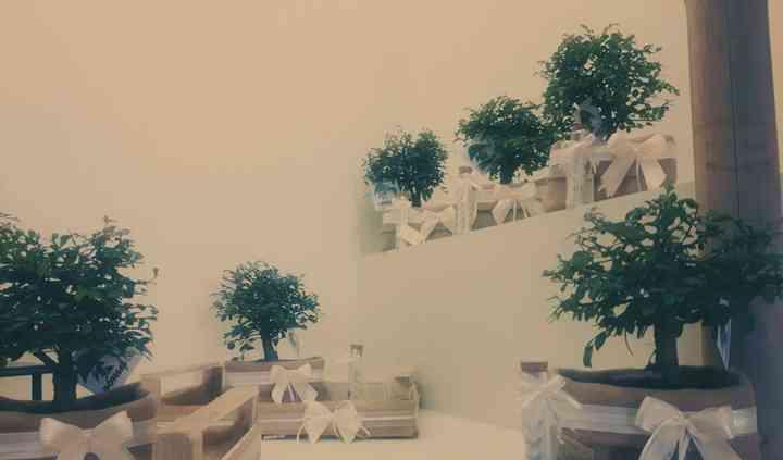 Allestimento bomboniere bonsai