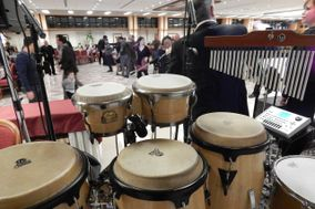 Percussion Live
