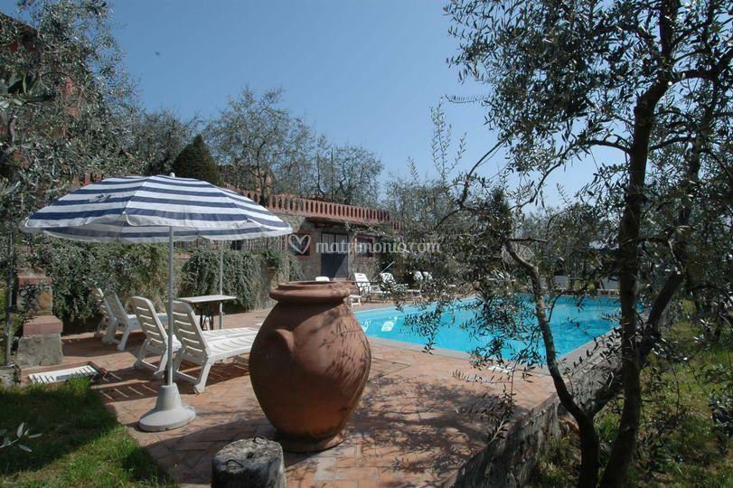 Piscina di agriturismo borgo della limonaia foto 9 for Piantina della piscina