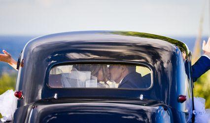 Lindera Spose