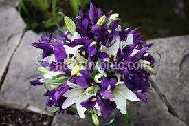 Iris e lilium