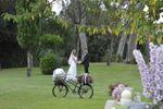 Sposi .... in bici...