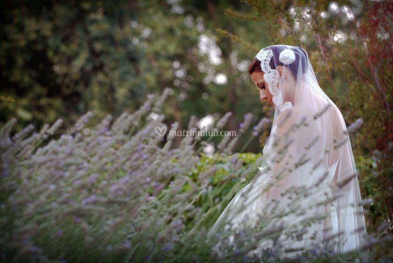Matrimonio salerno