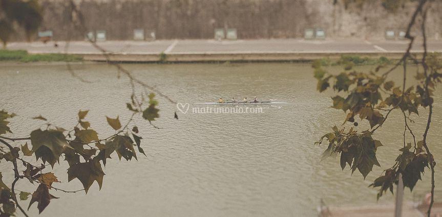 Frame film evergreen