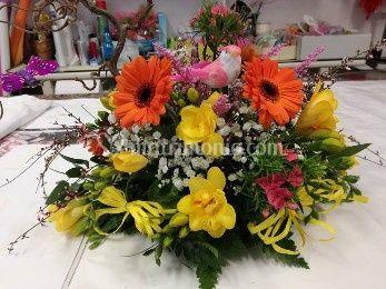 Floricoltura e Garden Tosatto