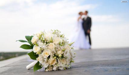 DP Wedding & Events