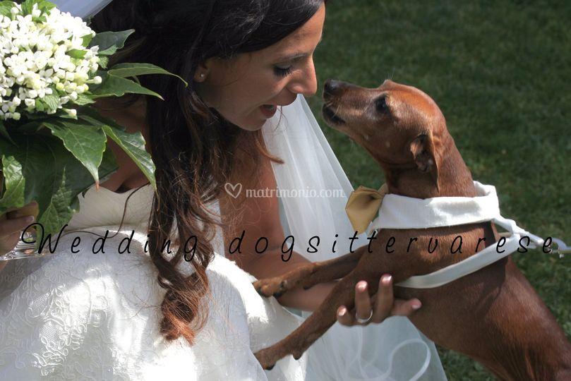 Affettuoso saluto alla sposa