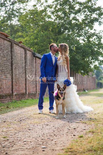 Gli sposi e il cane