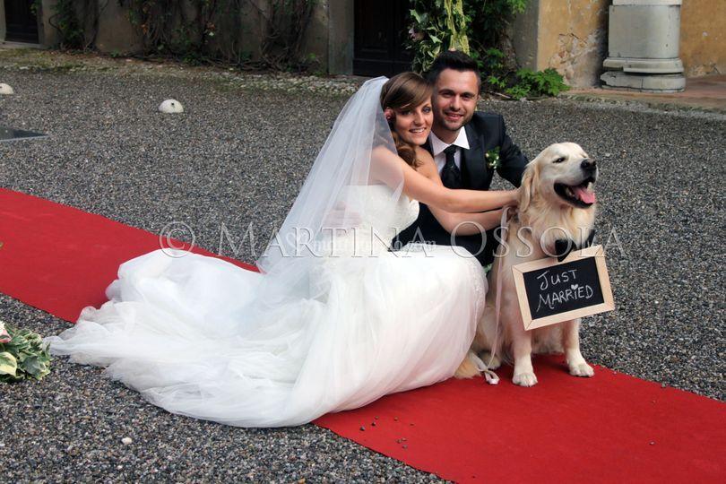 Wedding Dog Specialist Martina Ossola
