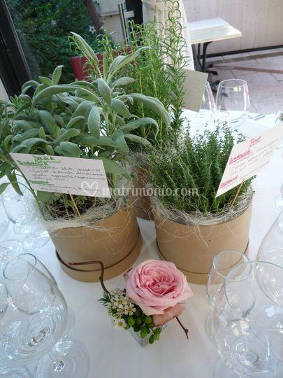 Centrotavola aromi e rosa