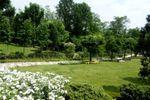 Parco per matrimonio