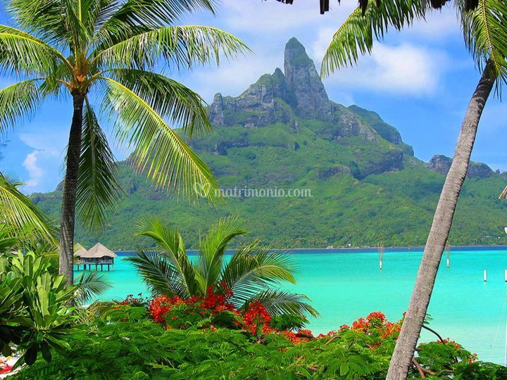 Polinesia paradisiache visioni