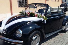Auto per cerimonie