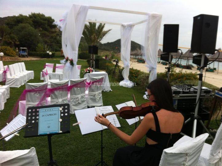 Matrimonio Simbolico Veneto : Amaranthus quartet