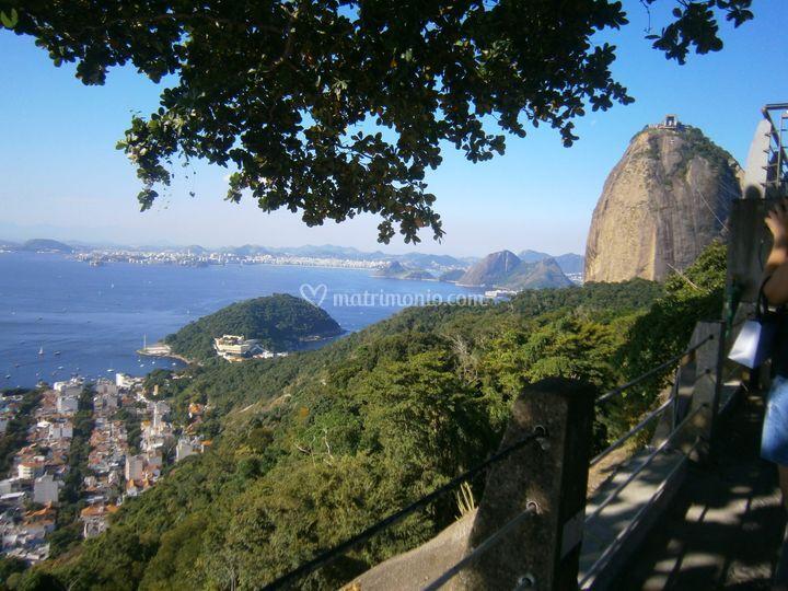Pan di Zucchero -  Rio