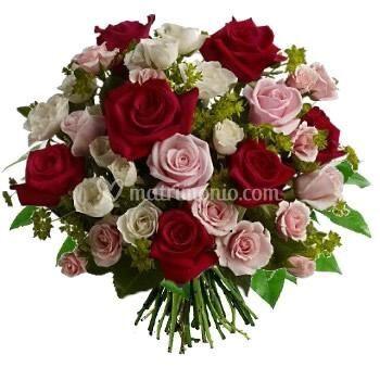 Rose Rosse e Rosa
