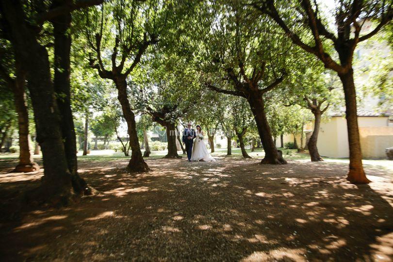 Fotografo matrimonio Isola d'E