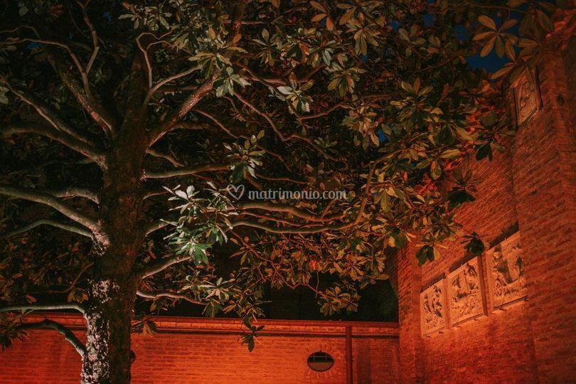 Notturno Giardino Ingresso
