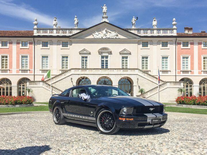 Mustang in villa fenaroli