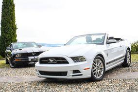 Mustang Noleggio