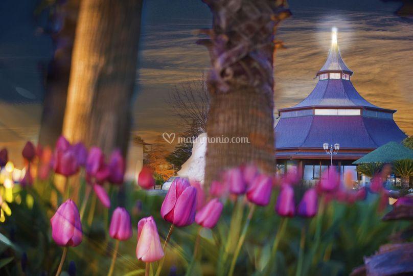 Pagoda e Tulipani