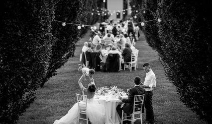 Elisabetta Zucchi Wedding & Party