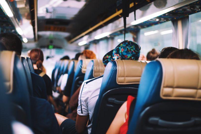 Noleggio autobus - Oliviero Tours
