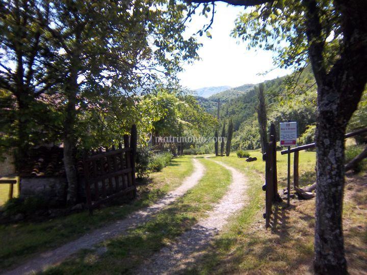 Borgo di Serignana