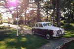 Bruni Cars Rover anni 60