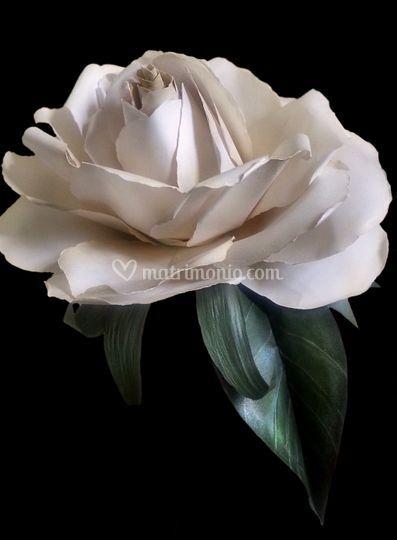 Bouquet, Gardenia Gigante
