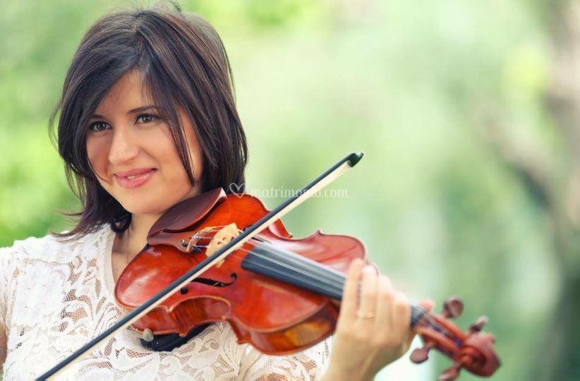 Insolito Pop- Violino