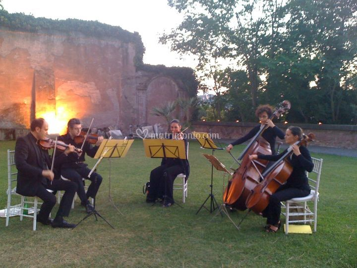Matrimonio Istituto Romano : White party all isola tiberina di movies string quintet