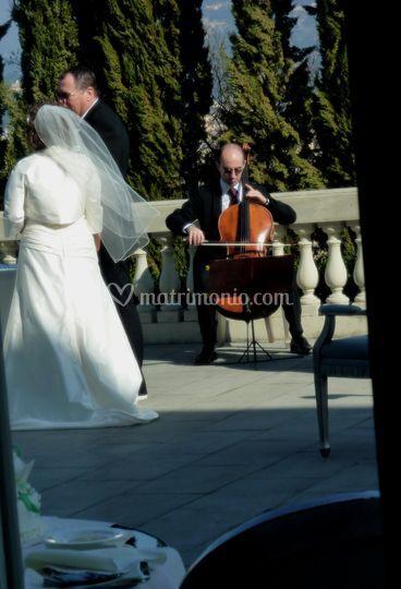 Violoncello solo - cello