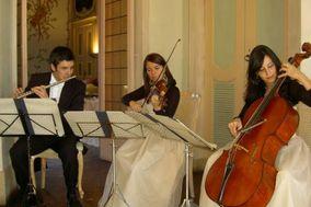 GC Musica e Ricevimenti Bergamo