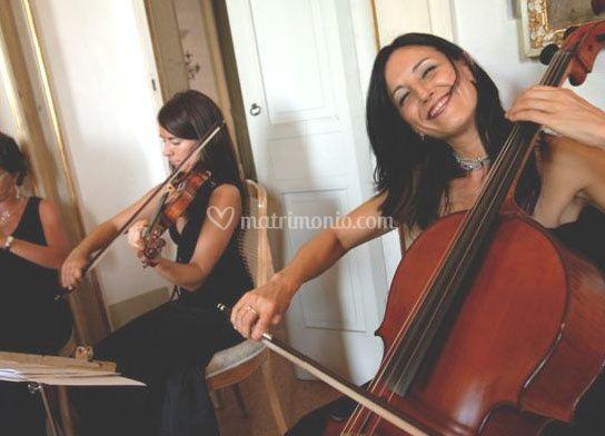 Musica GC Musica e Ricevimenti