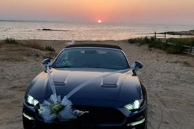 Mustang Experience