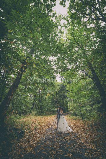 Nel bosco. Simone Mondino foto